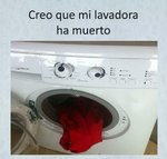 Lavadora muerta.jpg